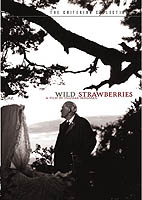 wild_strawberries